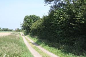 Landschaft mit Knick
