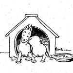 Plisch-u-Plum-Hütte (1)